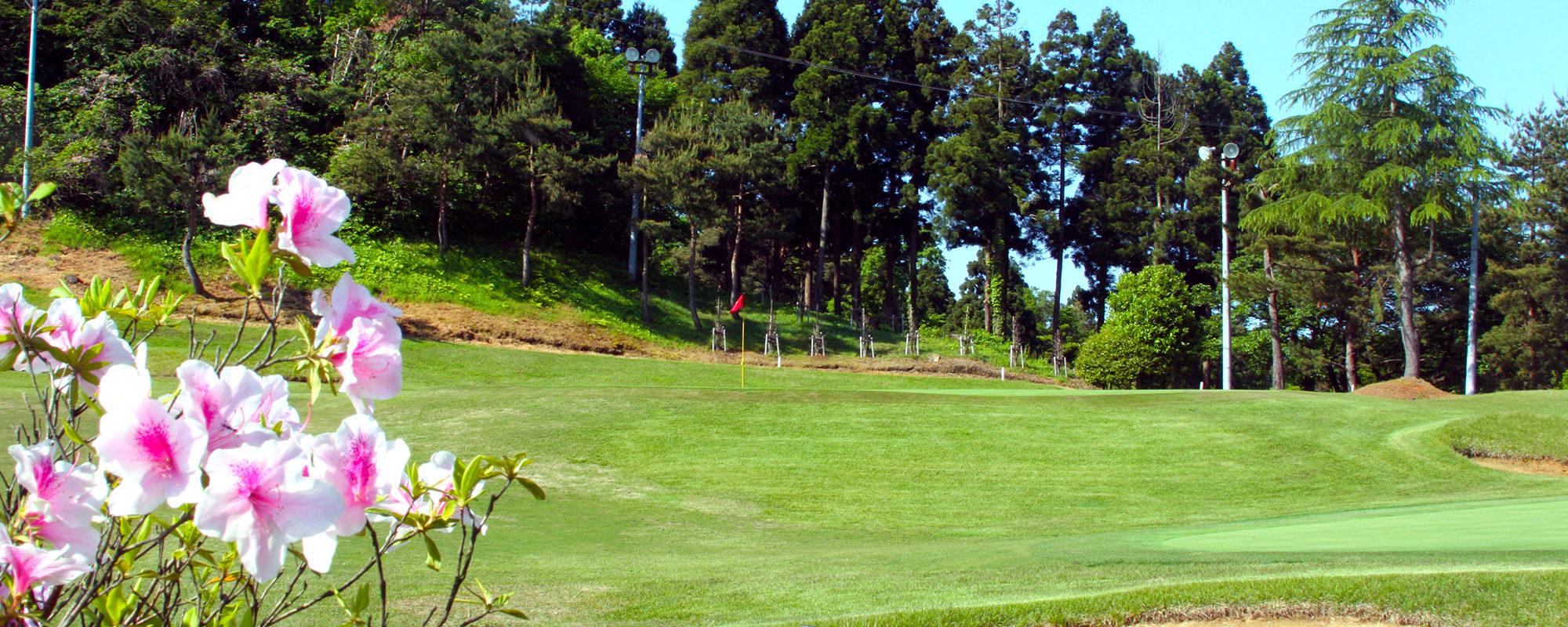 Hole18 Green